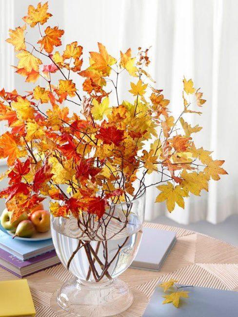 Принесите с собой сочные краски осени