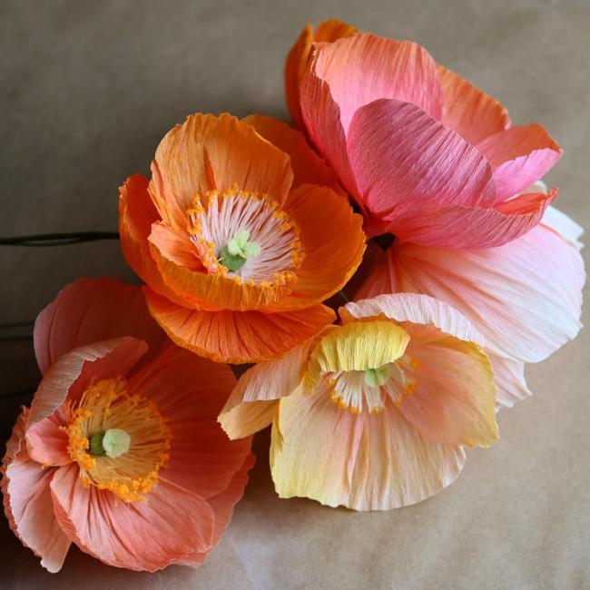 Красивые большие цветы
