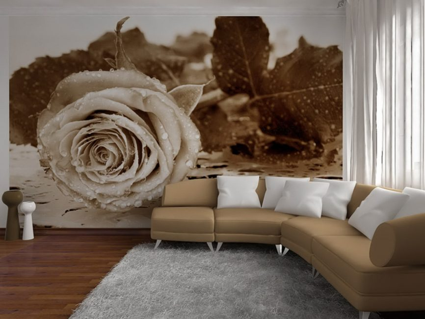 Вариант дизайна фотообоев с элементами декора