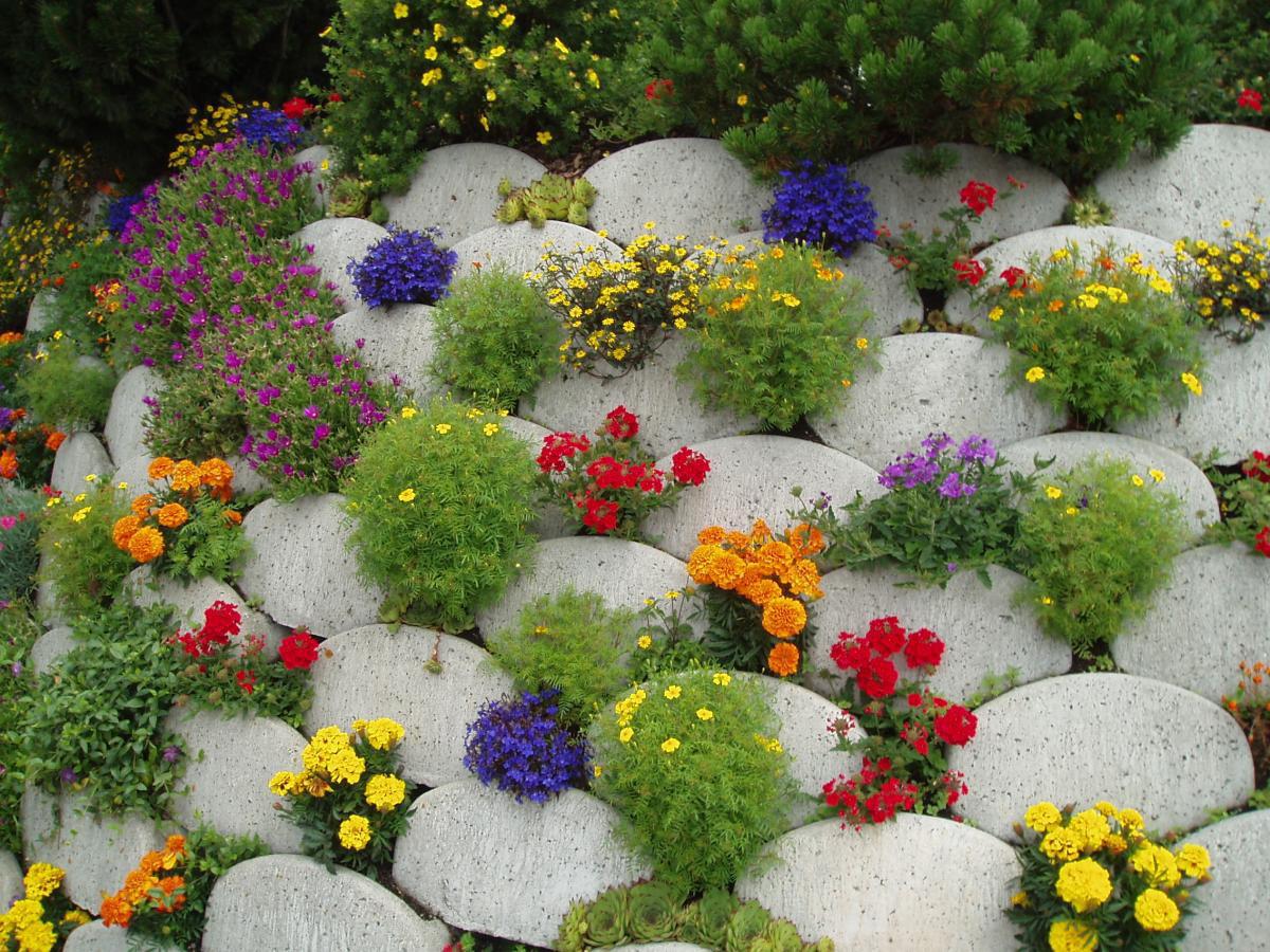 Оформление цветника своими руками в саду