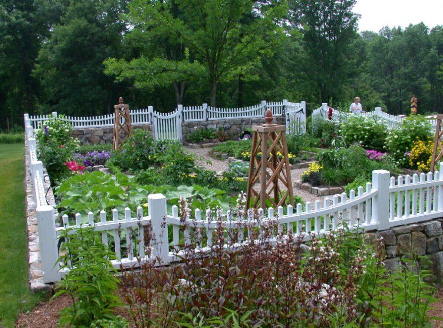 Колонистские сады имели важное практическое значение