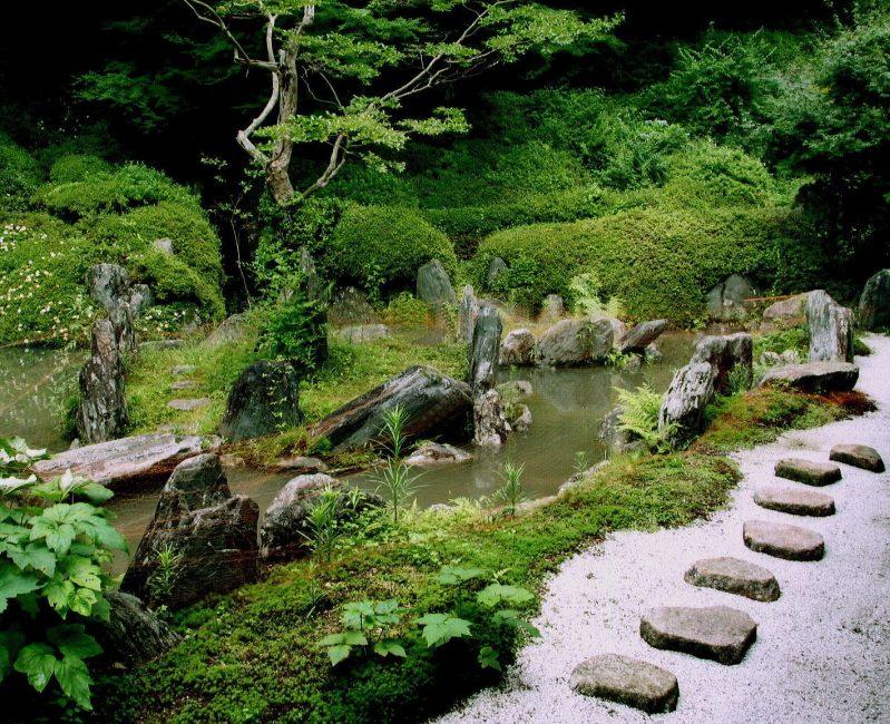 Сад любителей тайн, легенд и сказок