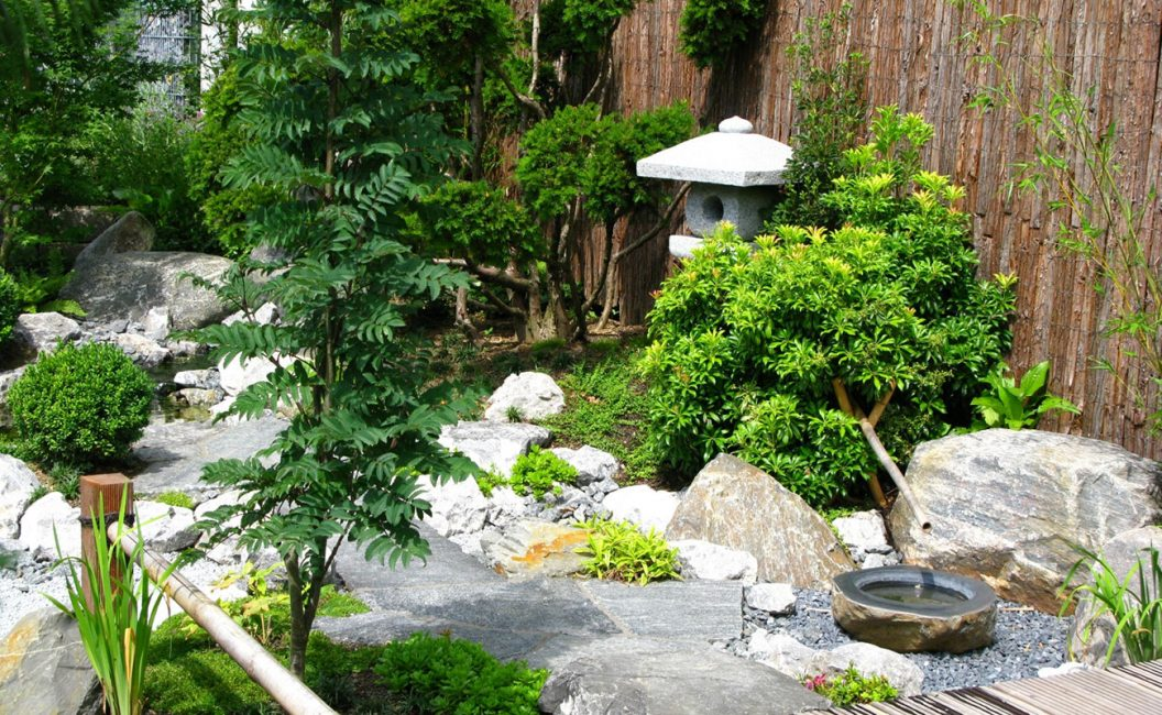 Для японского сада отлично подойдут зеленые растения с маленькими листочками и неброскими цветками