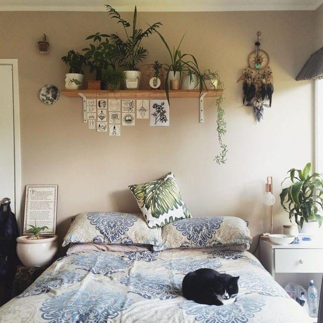 Разместите растения в любом уголочке спальни