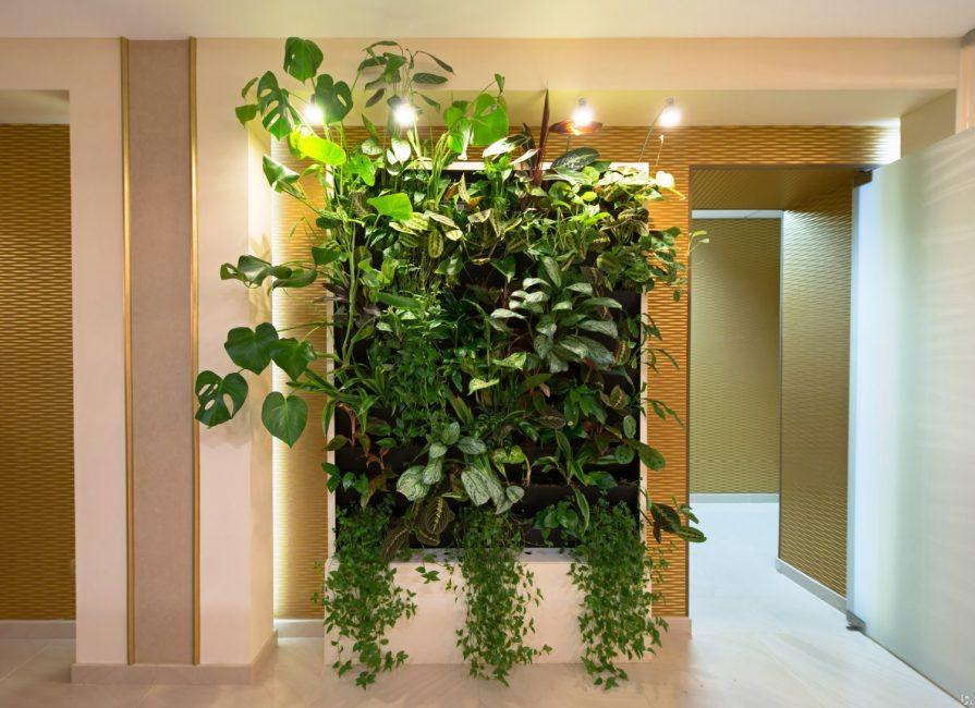 Интересное решение для любой квартиры