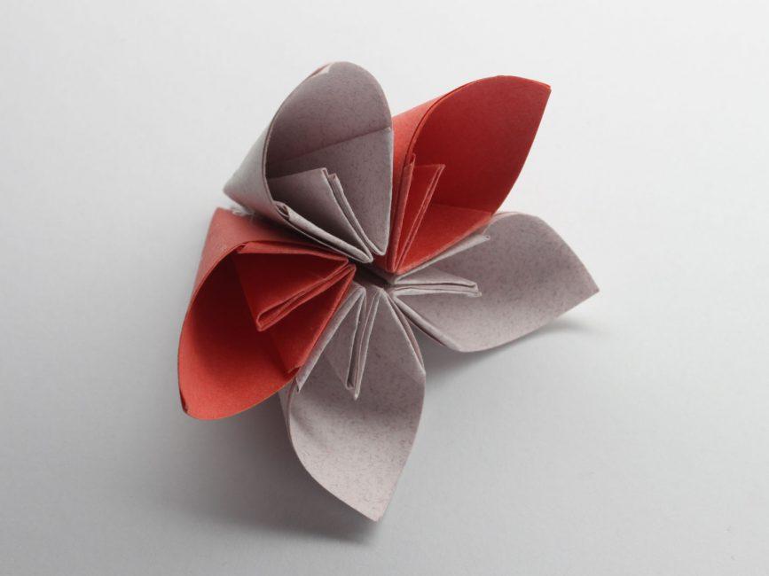 Цветок с пятью лепестками