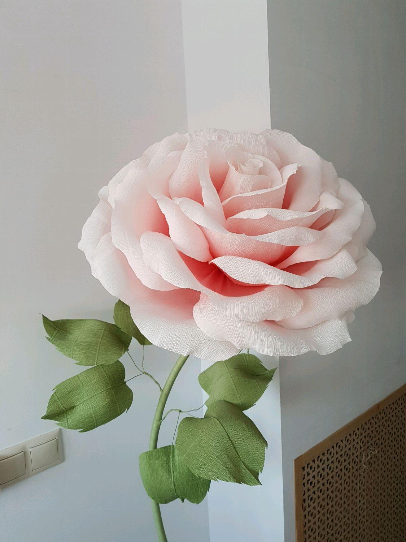 Картинки розы из бумаги