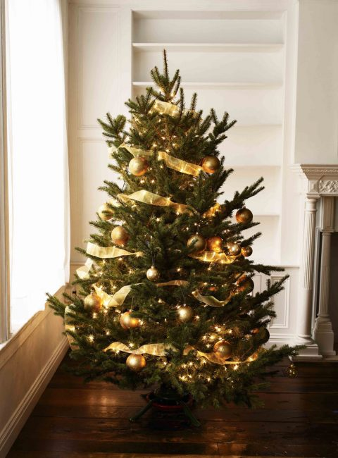 Ленты на новогоднем дереве