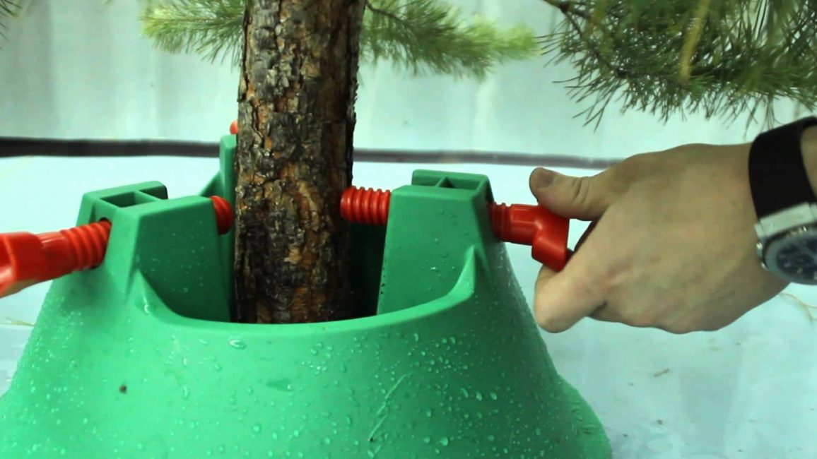 Приспособление для устойчивости дерева