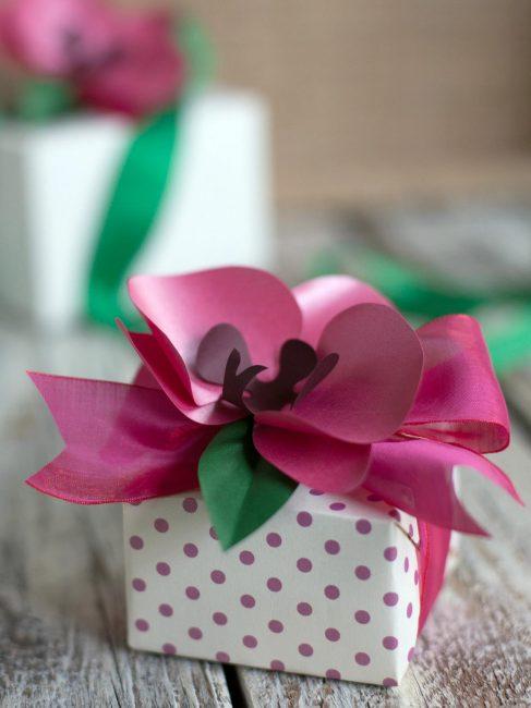 Прекрасная орхидея послужит замечательным украшением