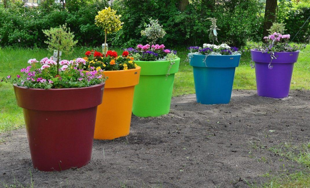 Интересное решение для сада