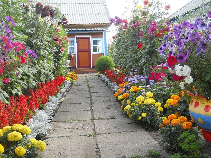 Цветовая гамма в высаживании сада
