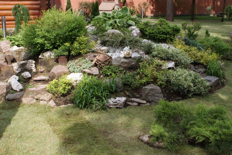 Сад без цветущих растений