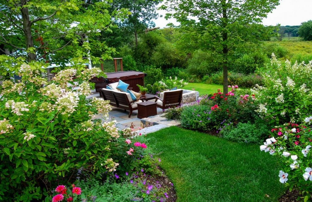Выбирайте растения подходящие климату