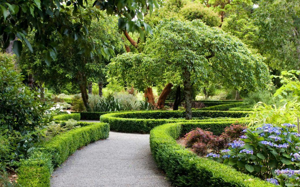 Лучший способ украсить свой сад — это использовать цветущую растительность