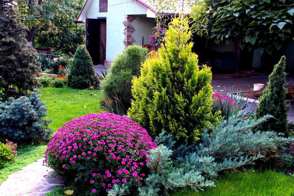 Создайте собственный сад своими руками