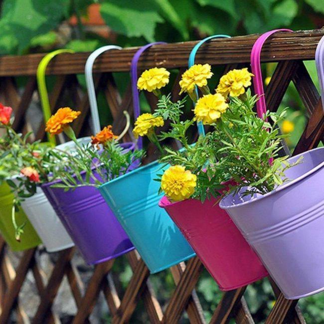 Подвесные цветы нужно поливать чаще