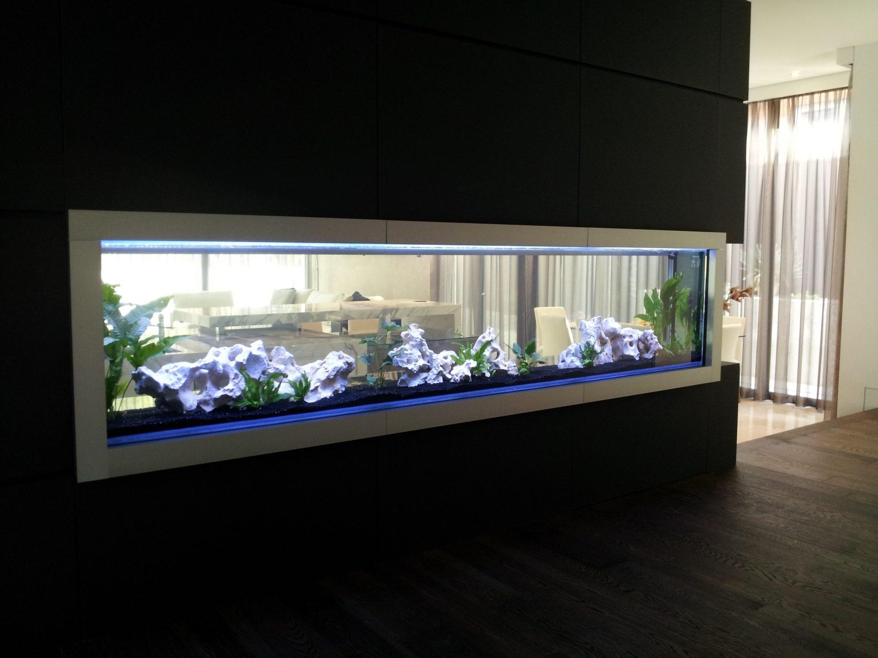 aquariums outreach team worked - HD3264×2448