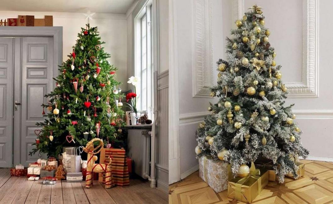 Обязательный атрибут Нового года - красавица елка