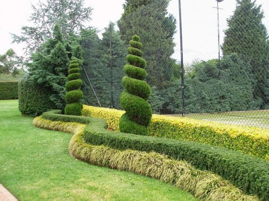 Принято использовать не только высадку кустарников