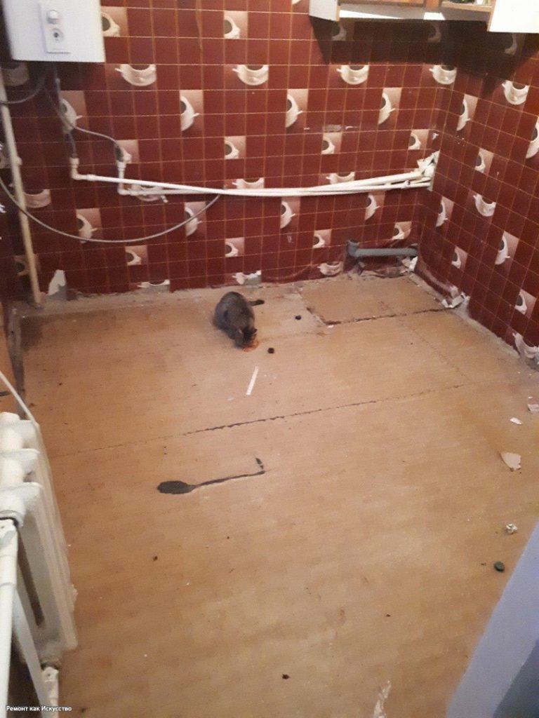 Парень в 19 лет сделал ремонт на кухне в подарок родителям. Фото До/После