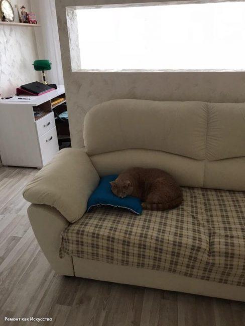 Также заказали письменный стол, который поставили в углу. К перегородке спинкой поставили небольшой бежевый диванчик для отдыха.