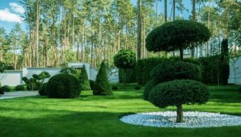 Ландшафтный дизайн для сада своими руками. ТОП-9 стилей, о которых нужно знать + 185 ФОТО