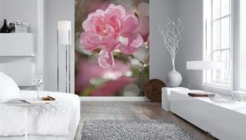 3Д фото обои на стену (+225 Фото): ТОП-5 видов для современных интерьеров + Советы по оформлению