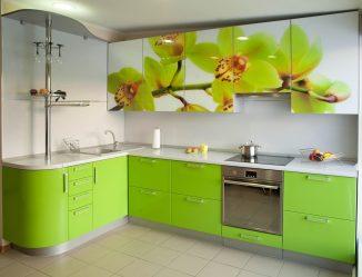 Свежесть и безопасность Зеленого в декорировании: 130+ Фото зеленой кухни в интерьере. Что дарит этот природный цвет?