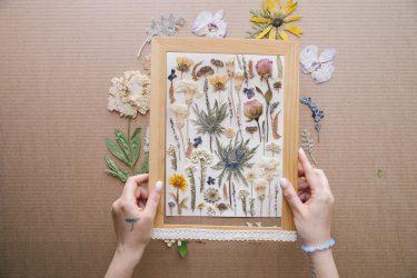 Поделки из природного материала своими руками (+185 Фото). Ваш ребенок это сможет!