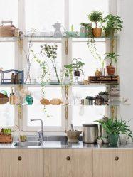Стеклянные полки в комнате на стене: 150+ Фото использования в гостиной, на кухне, в ванной. Какой вариант выбрать?