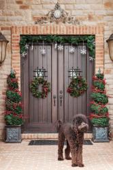 Крутые идеи своими руками: Украшения на дверь на все случаи жизни (80+Фото). Сезонные и тематические оформления (+Отзывы)