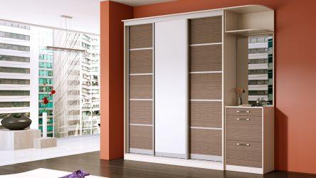 Встроенный шкаф-купе в прихожую: 170+ Фото дизайна и идей. Учимся правильно организовывать пространство